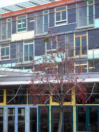 sankt benno gymnasium in dresden johannstadt architektur des 20 jahrhunderts von g nter. Black Bedroom Furniture Sets. Home Design Ideas